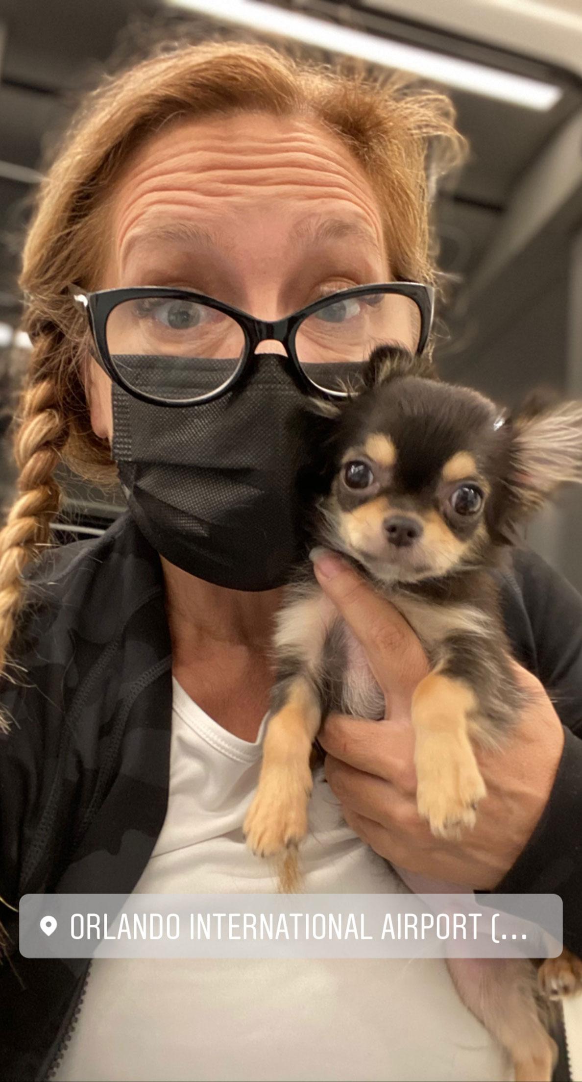Flight Pet Nanny transporting a chihuahua puppy